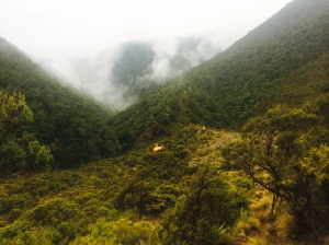 Top Wairoa Hut, the Richmond Ranges